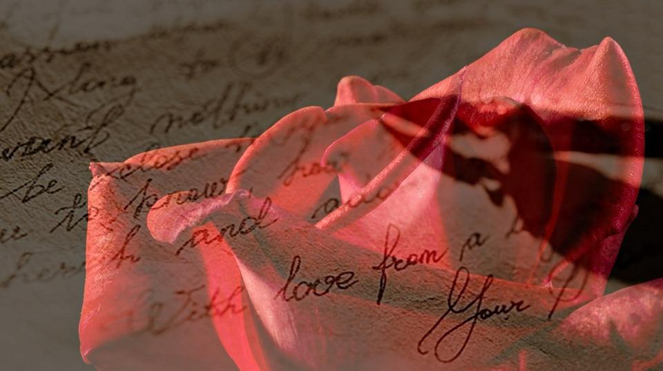 rose-1894760_960_720 Pixabay
